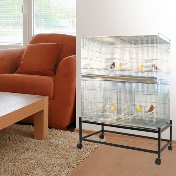Divided Bird Cage Home Ideas